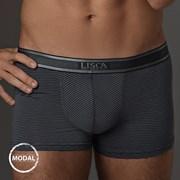 Boxeri barbatesti LISCA Modal Zeus Graphite
