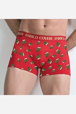 Boxeri barbatesti Vánoční kaktus