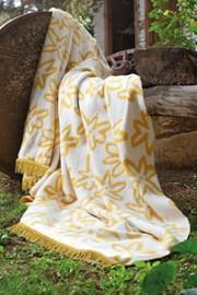 Patura Yellow dream