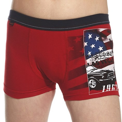 Boxeri baieti America rosu